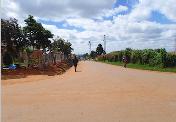 Street Road Network